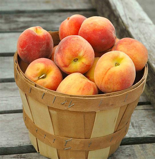 Персики в светлой деревянной кадке