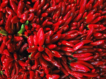 Множество красного перца