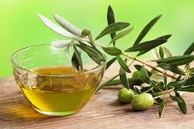 Жожоба - растение, применяемое в косметологии