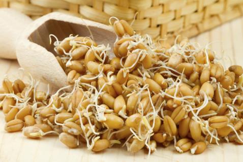 Деревянный совок и пророщенные семена