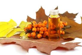 Облепиха на листьях и масло в бутыльке