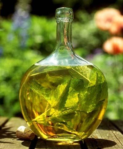 Листья мелиссы в широкой бутылке
