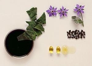 Черный тмин: цветы и семена