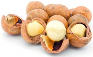 Белые орехи в коричневой скорлупе
